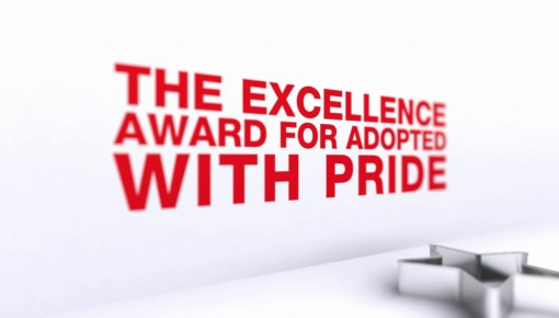 Red Cross – Excellence Awards